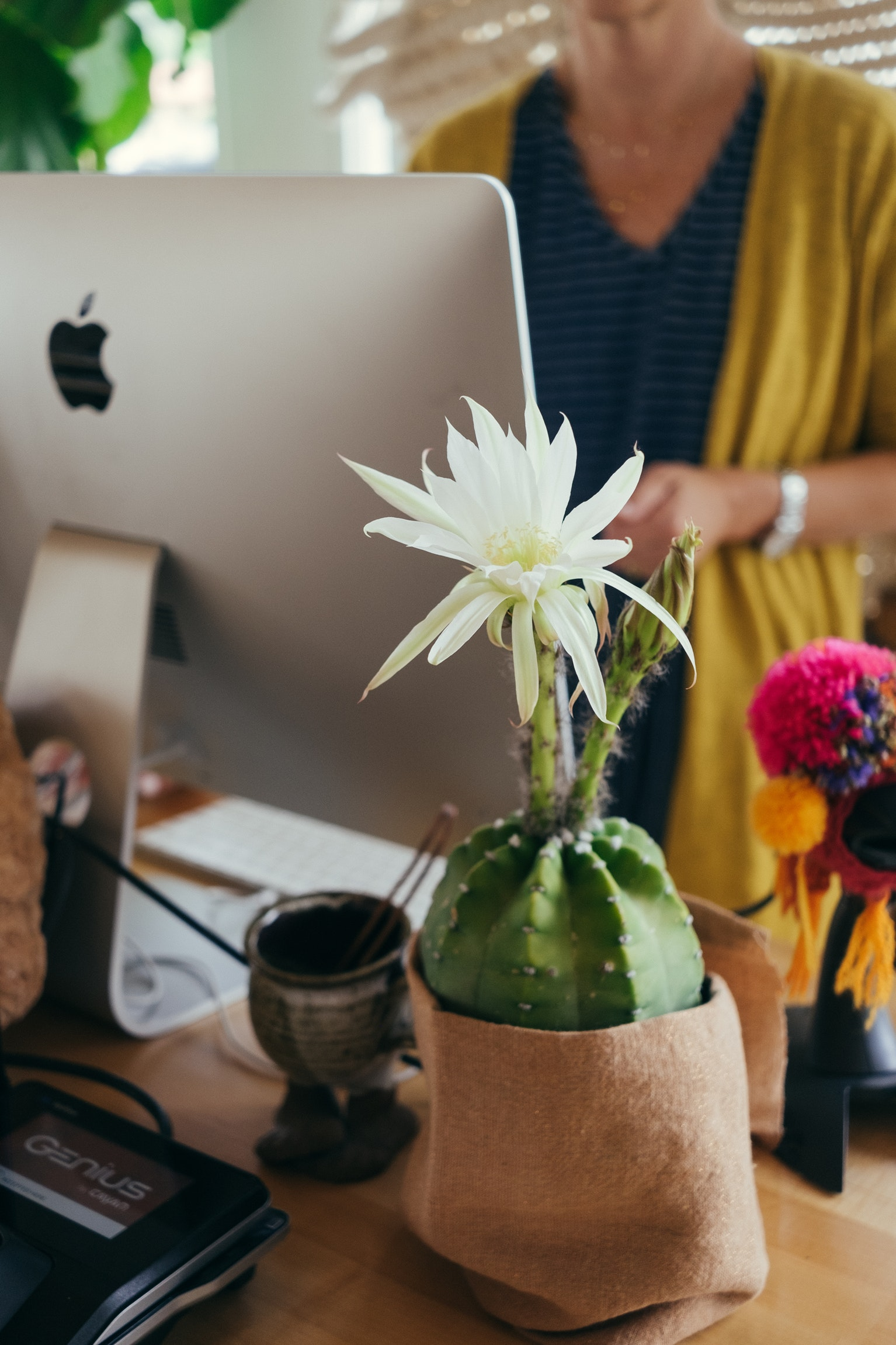 How to Define Your Passion and Discover Your Purpose