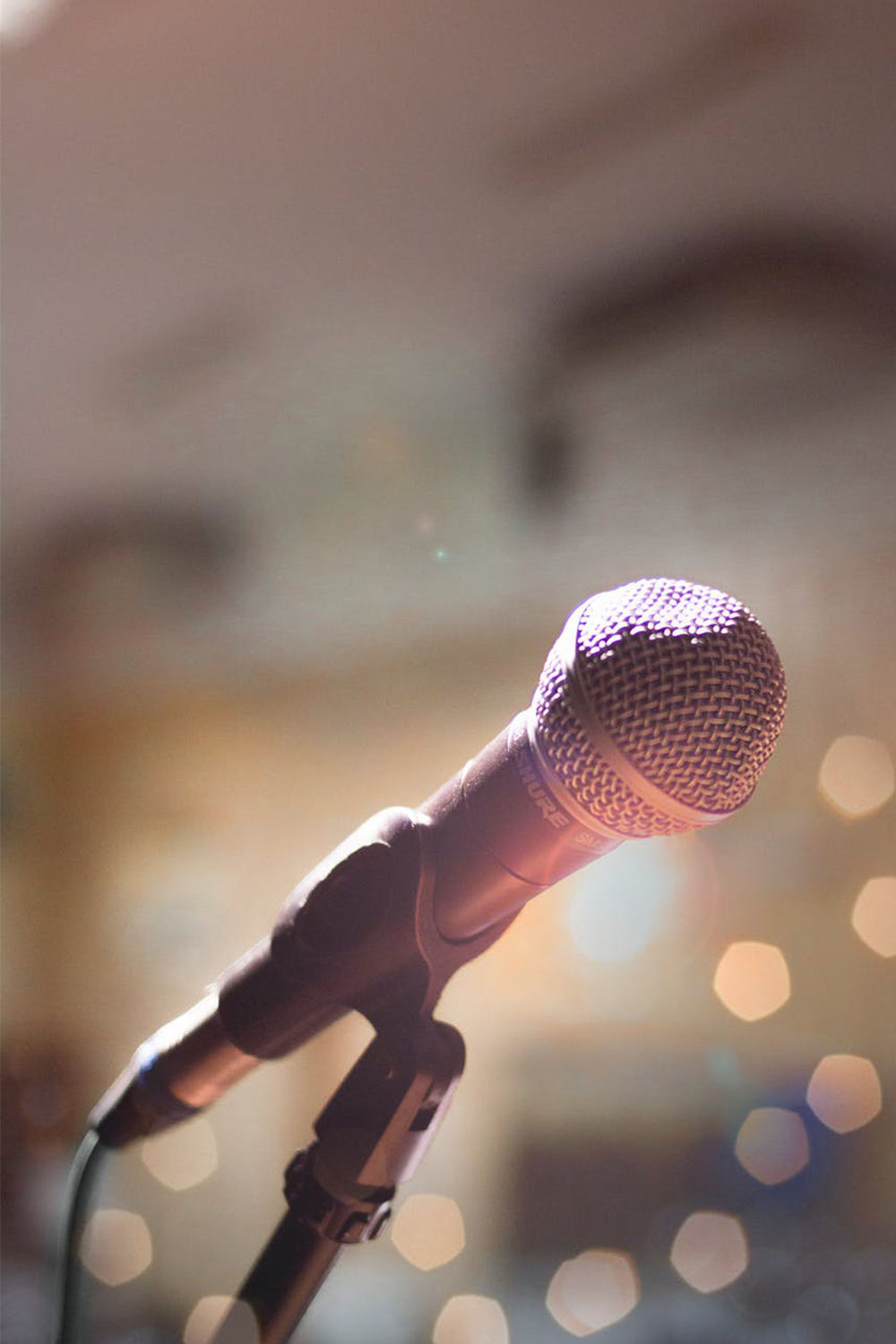 What Your Audience Wants From Your Next Speaking Engagement